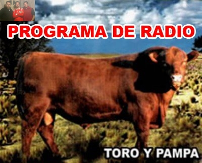 Toro y Pampa