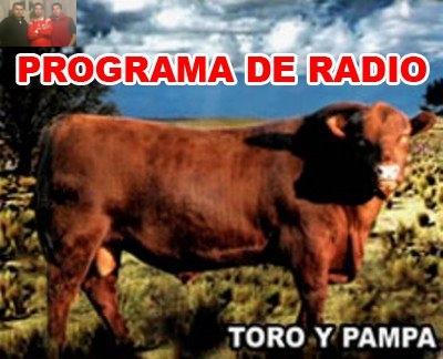 Toro y Pampa